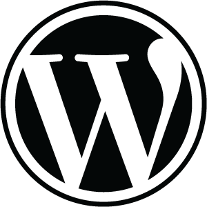 Austin web design with WordPress